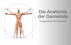 Die Anatomie der Gemeinde*