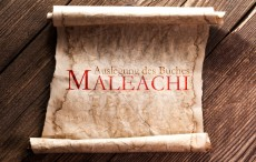 Das Buch Maleachi